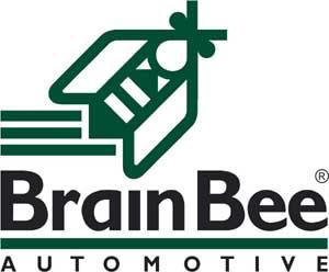 http://canltd.com/DIYAGNOZ/BrainBee.jpg